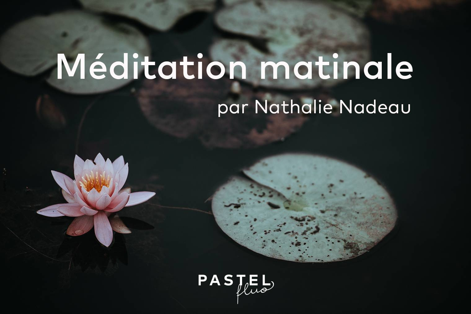 Méditation guidée matinale (ancrage, gratitude, libération)